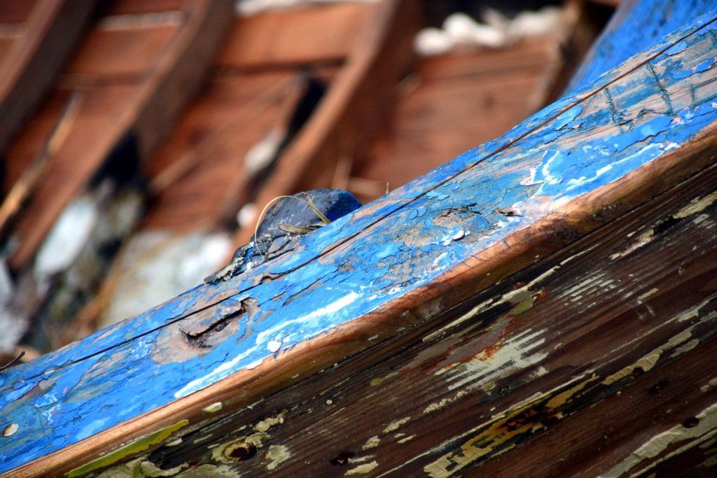 Wood Rot Image