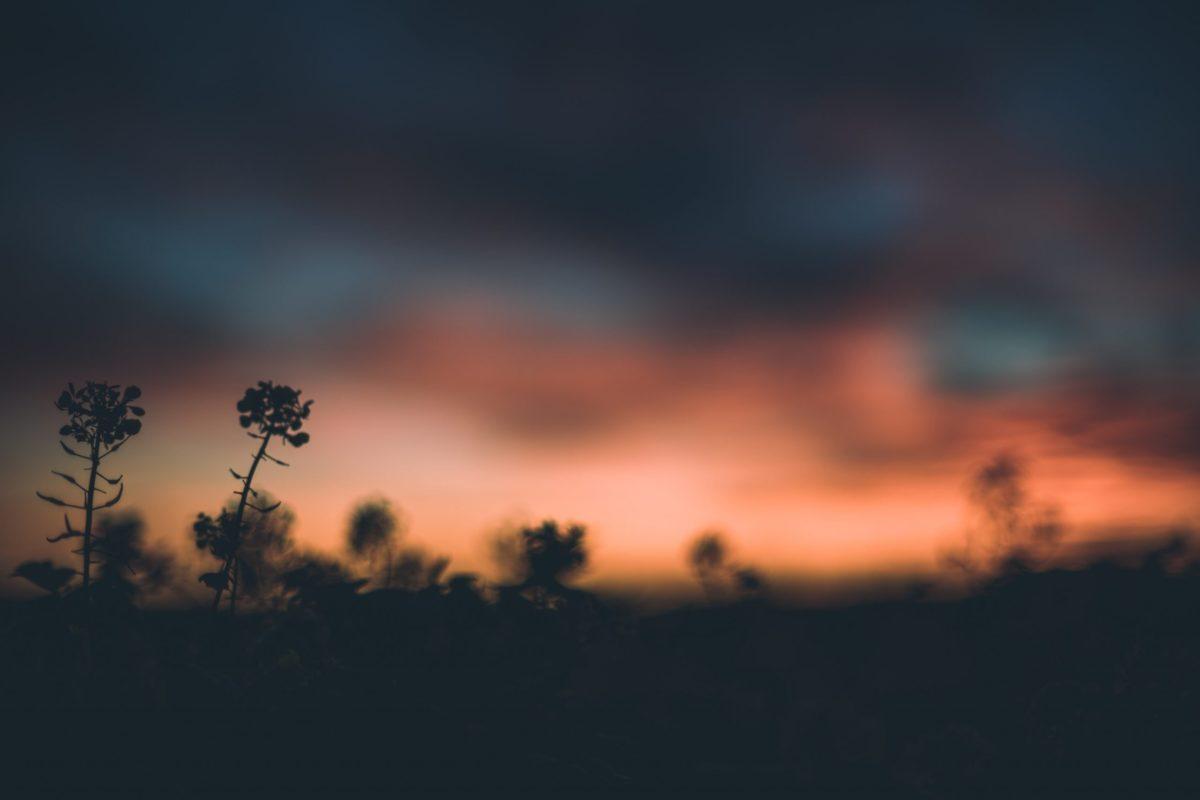 A blurred sunset over Charleston, South Carolina